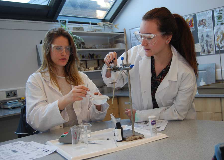 ib-science-girls-experiment